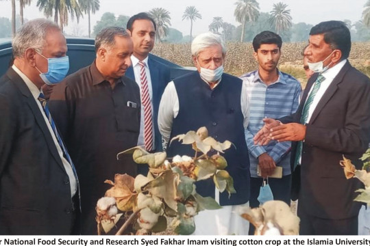 Federal Minister National Food Security and Research Visit IUB Cotton Fields